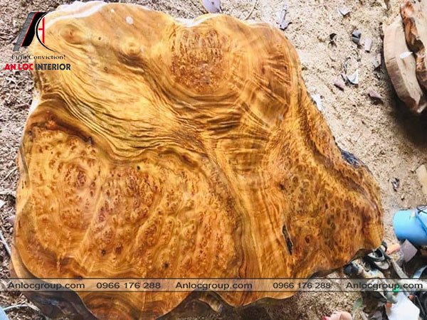 gỗ xá xị