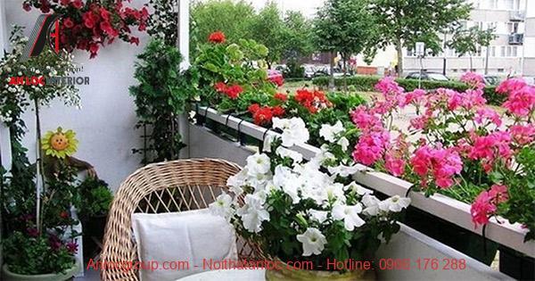 Kết họp những chậu hoa trang trí kết hợp với bộ bàn ghế để ngồi thư giãn