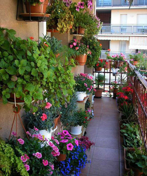 Trang trí ban công căn hộ bằng giỏ hoa rực rỡ sắc màu