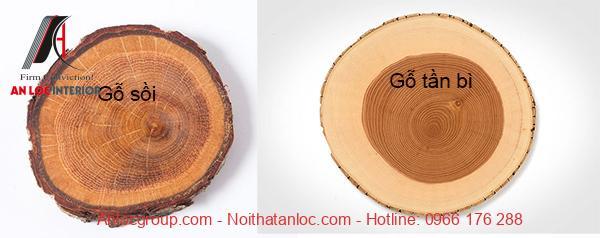 Hình ảnh về 2 loại gỗ được nhập khẩu từ Châu Âu